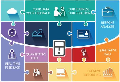 Direct Data Analysis Ltd  Professional Survey And Research